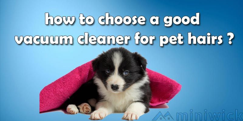 how to choose a good vacuum cleaner for pet hairs