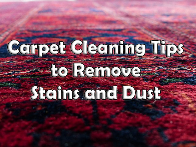 carpet cleaning tips and trick to remove stains and dust
